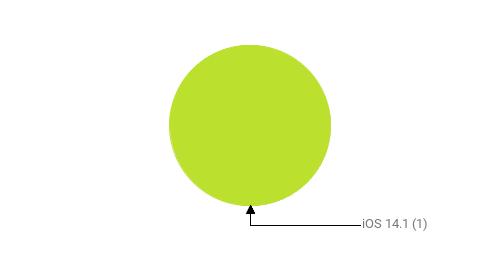 Операционные системы:  iOS 14.1 - 1